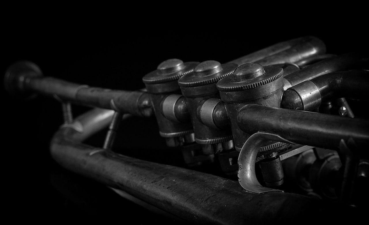 zwart en wit trumpet
